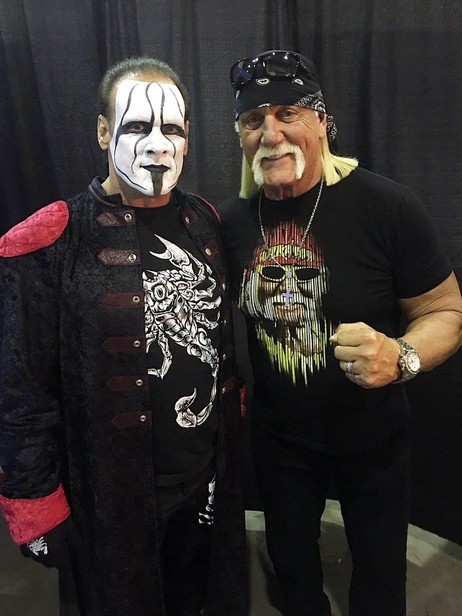Sting & Hulk Hogan Reunite