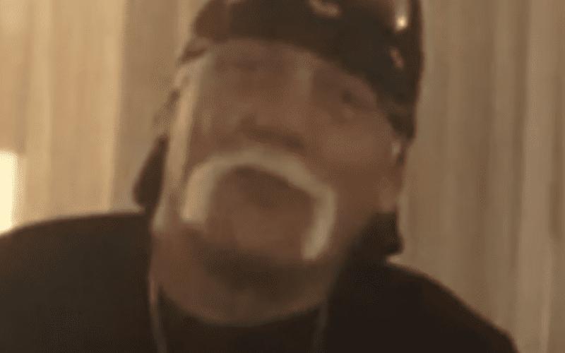 Hulk-Hogan-TMZ-Interview-2018