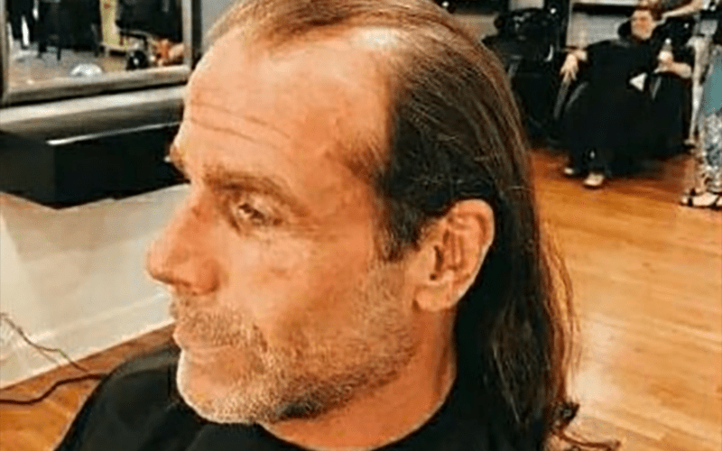 Shawn-Michaels-Hair