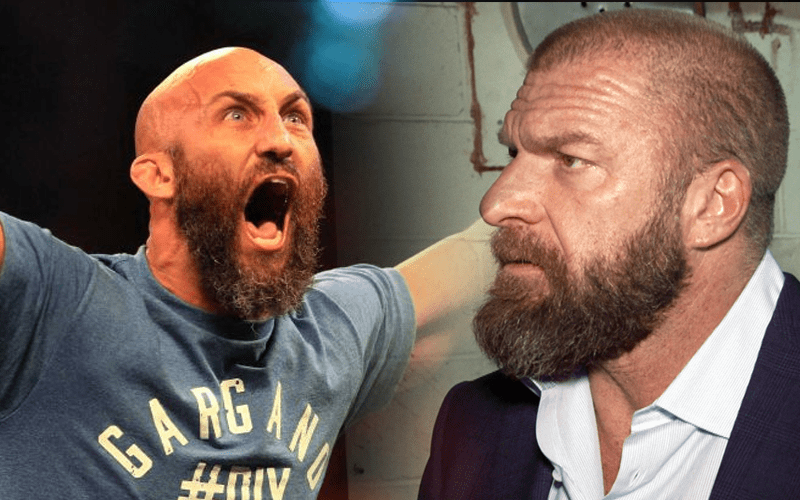 Image result for hhh tommaso ciampa