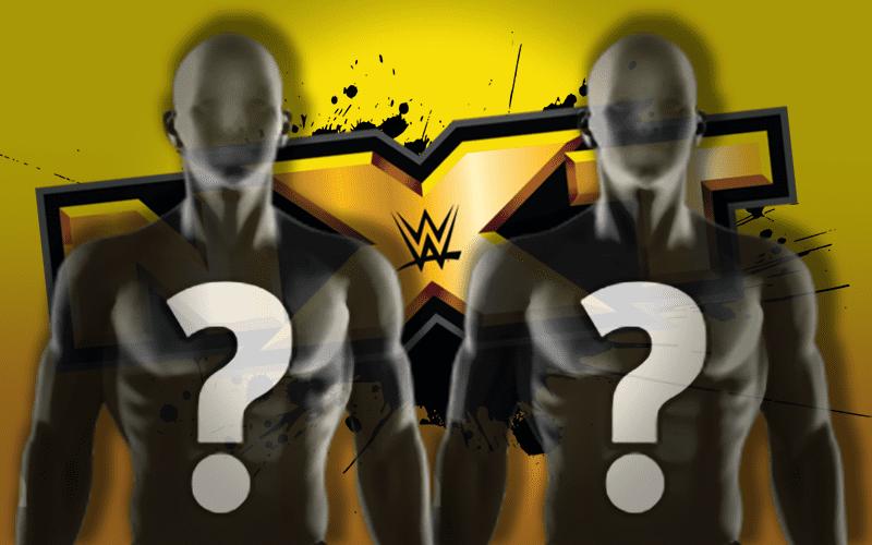 NEWER-NXT-Spoilers