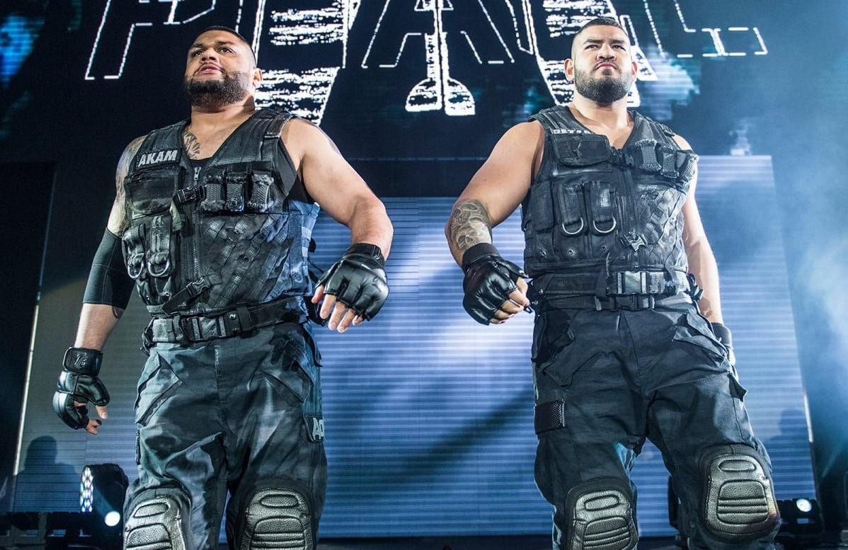 authors of pain 12312