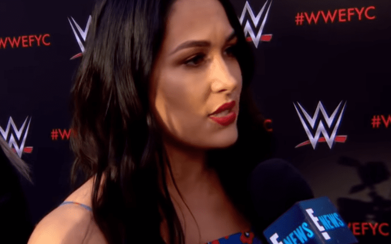 Brie-Bella-on-Relationship