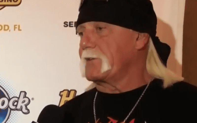 Hulk-Hogan-WWE-Return-Interview