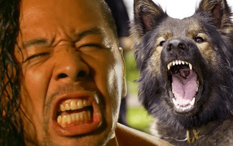 Nakamura-Dog-Bite