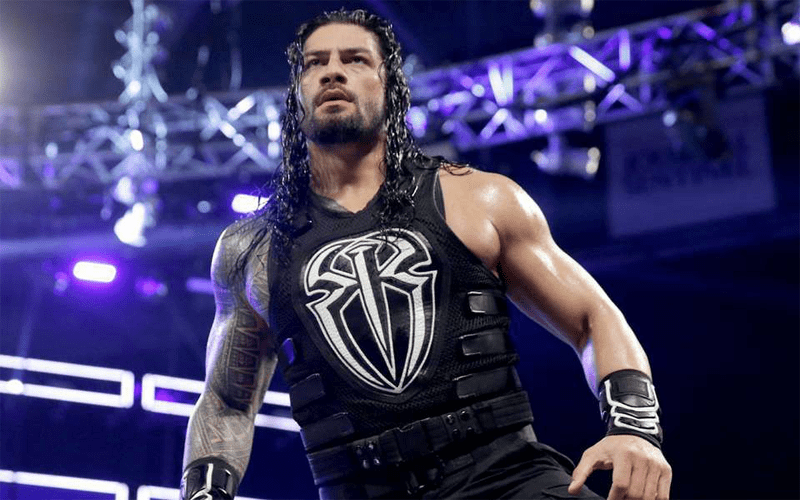 Roman The Big Dog Reigns