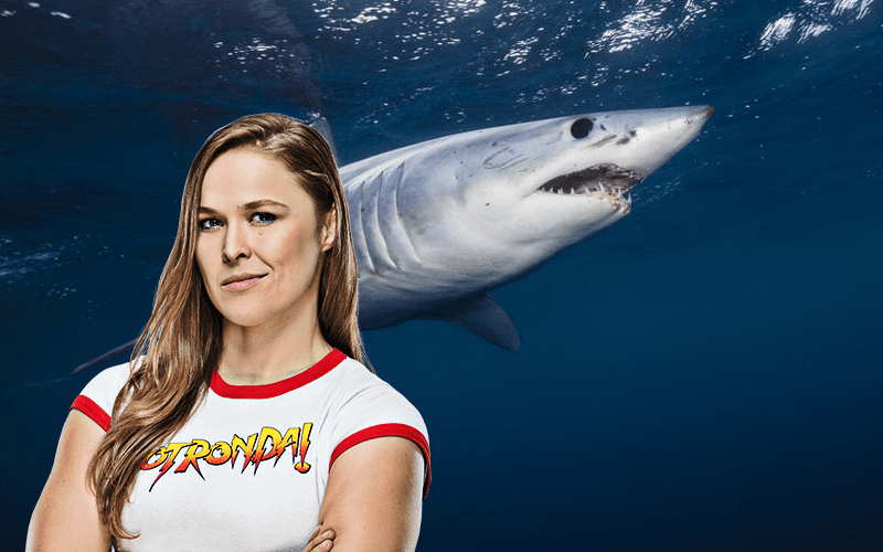 Ronda Rousey Shark Week