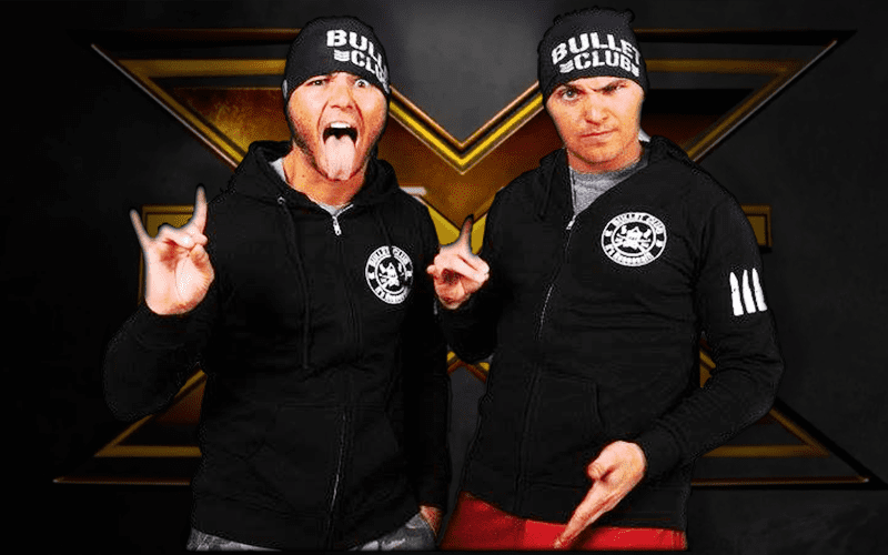 The-Young-Bucks-NXT