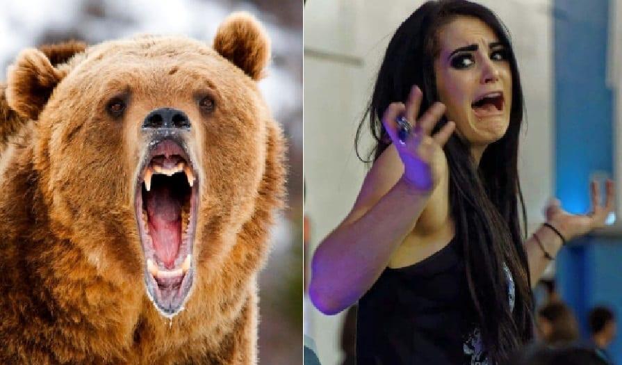 paige bear 234