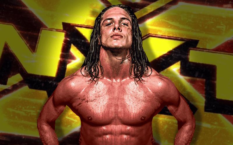 Matt-Riddle-NXT-NEWEST