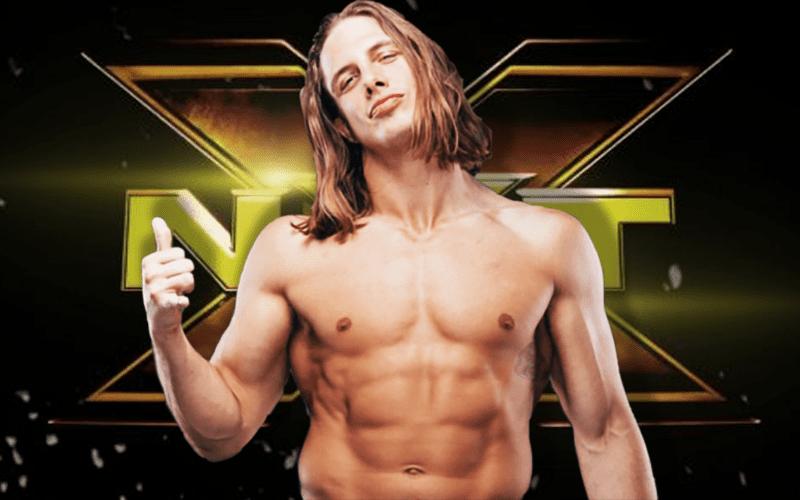 Matt-Riddle-NXT-New