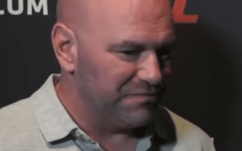 Dana-White-Reacts