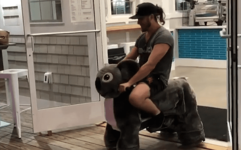 Popular-Indie-Star-Gets-Caught-Trying-To-Hijack-Mechanical-Horse
