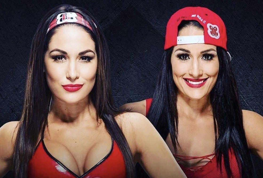 bella twins 234233333