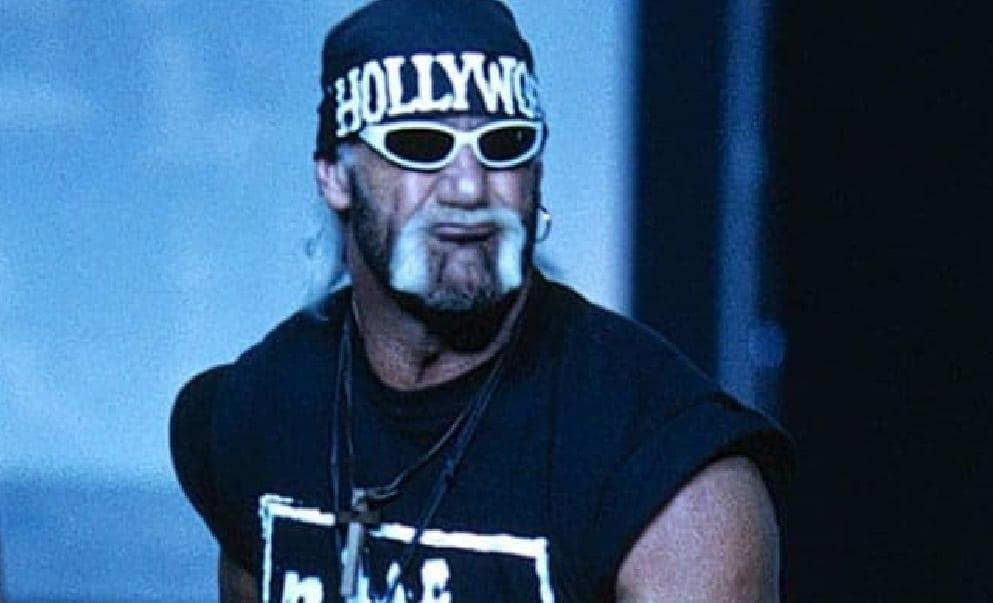 Who Hulk Hogan Borrowed From To Create The Hollywood nWo Look