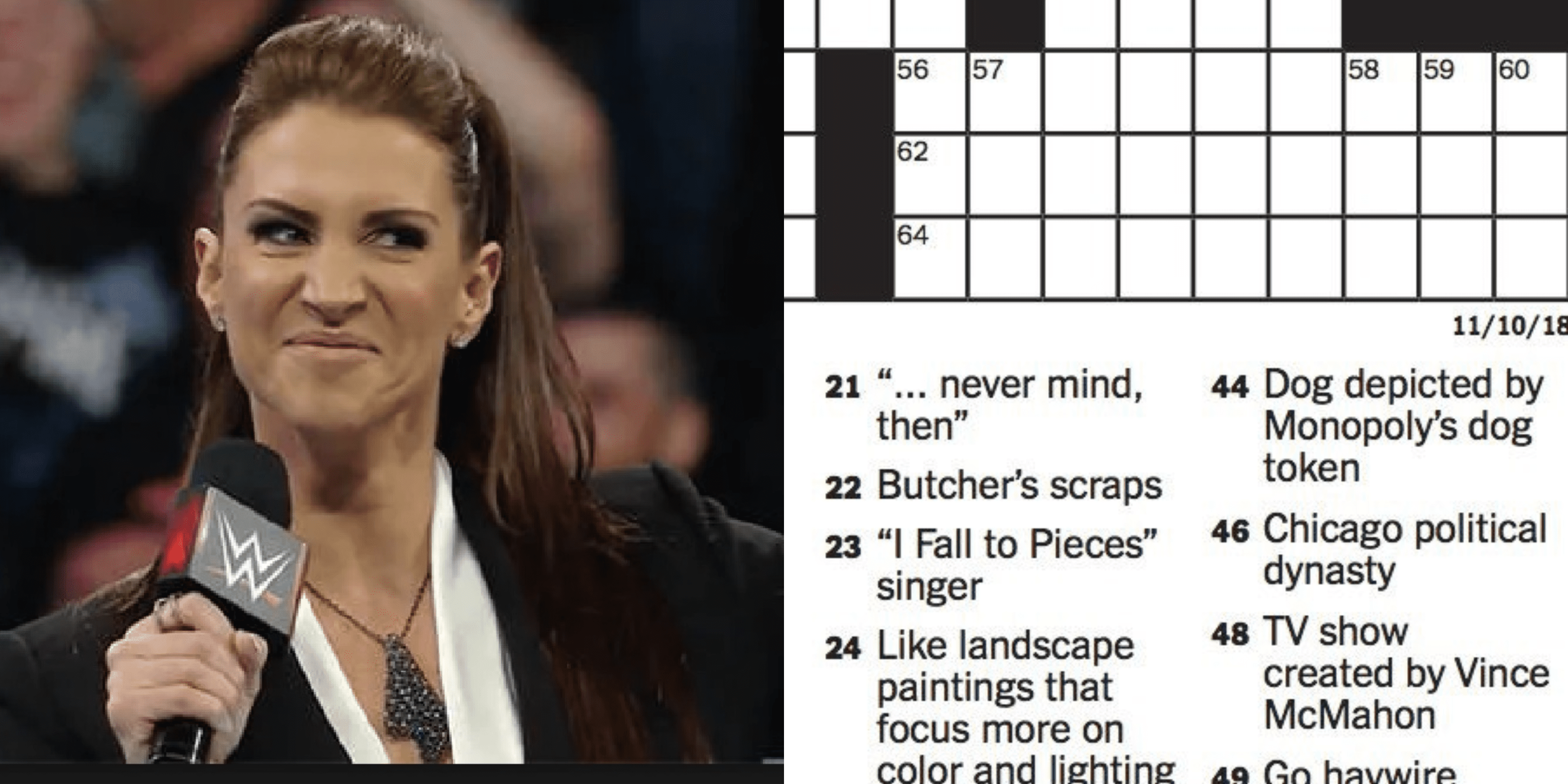 stephanie mcmahon nyc puzzle