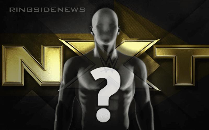 NXT-2019-Spoiler