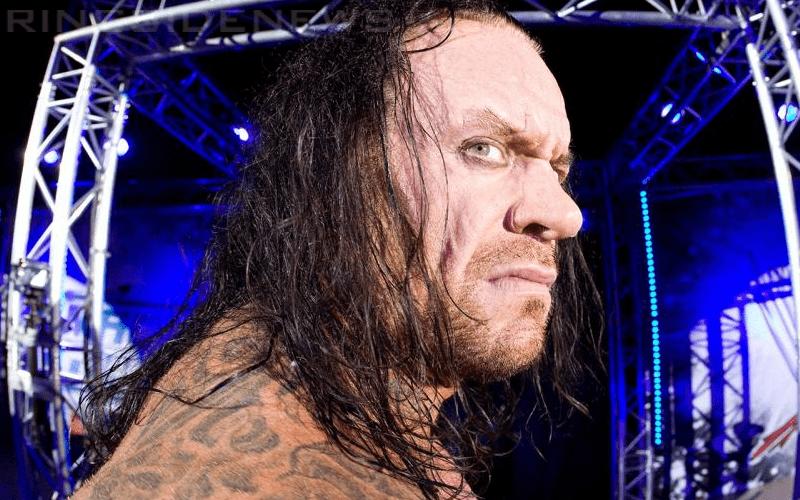 undertaker-848