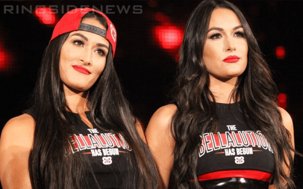 The Bella Twins Are Tempted To Make WWE Return