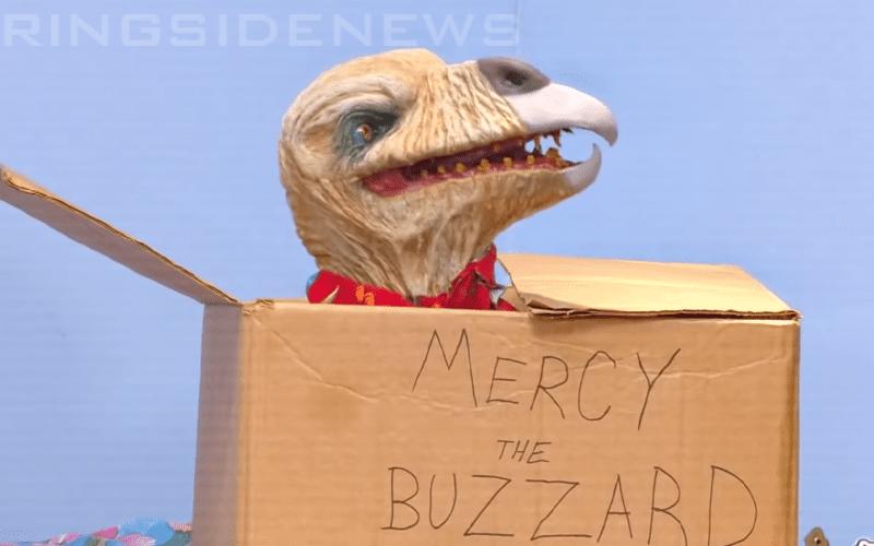 Reason Behind Name Of Bray Wyatt's Buzzard On Firefly Fun ...