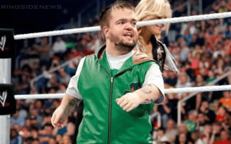 hornswoggle-24