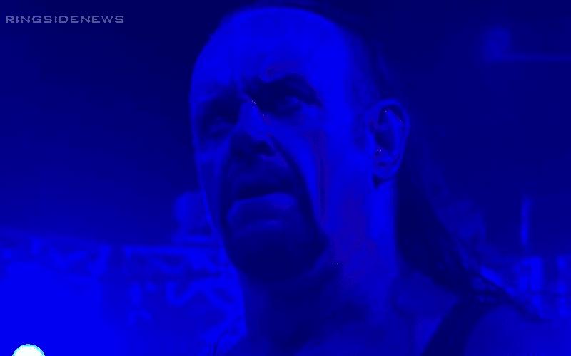 the-undertaker-asdfadf