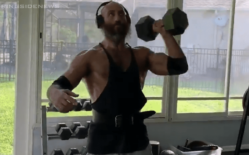 tommaso-ciampa-working-out