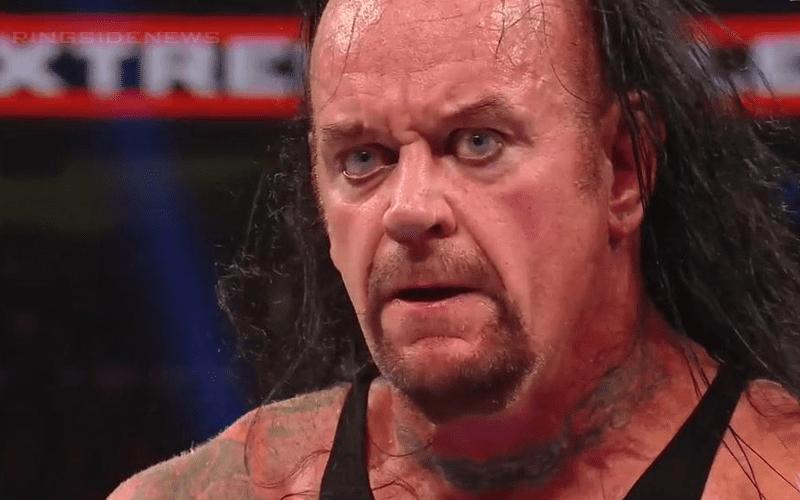 the-undertaker-adsadfasd