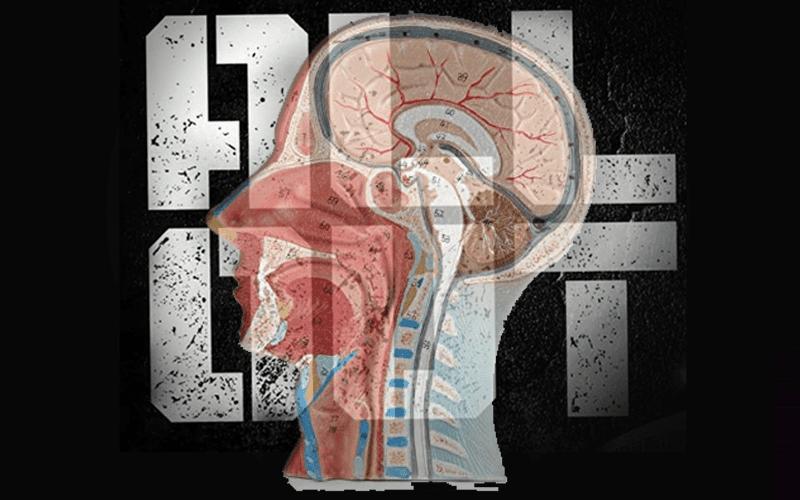 all-concussion-45