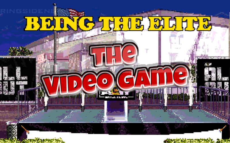 being-the-elite-video-game