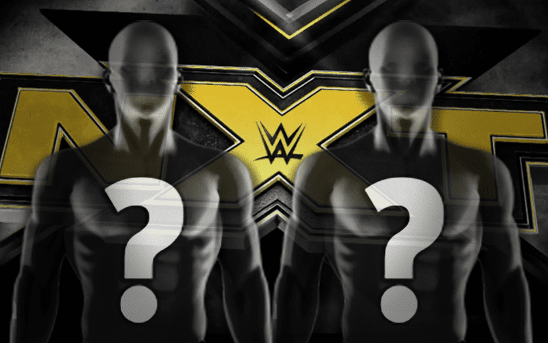 Good Sign For Future Of WWE NXT Tag Team - Ringside News