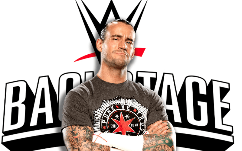 cm-punk-WWE-backstage-logo