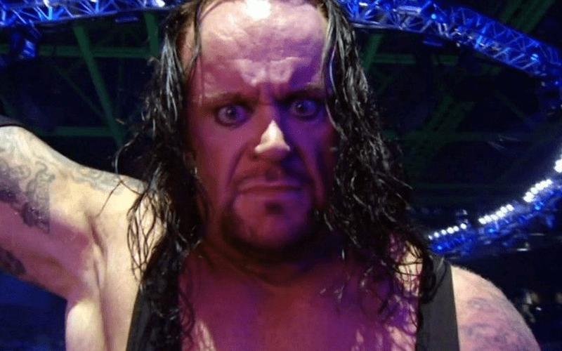undertaker-8248428