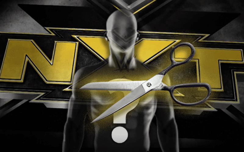 wwe-nxt-cuts-release