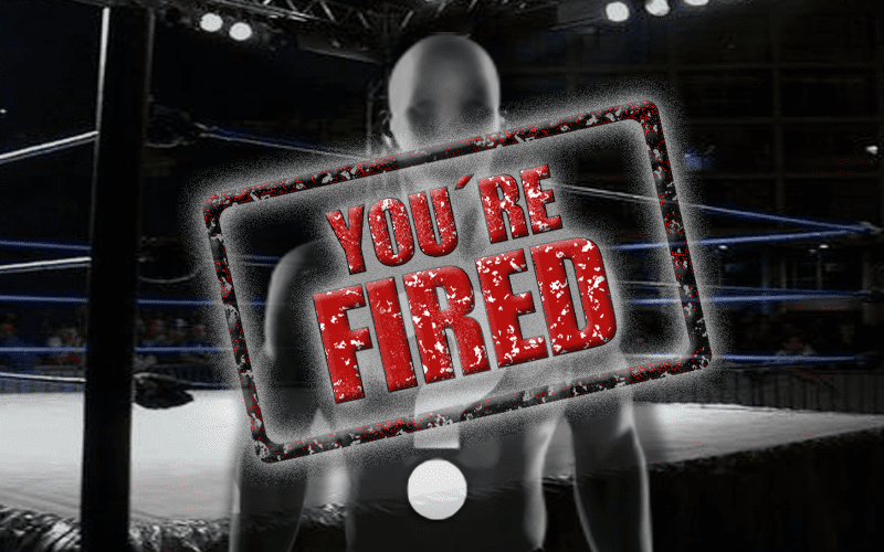 indie-ring-spoiler-fired