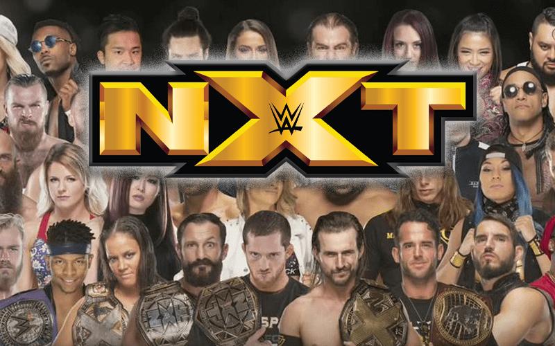 nxt-roster-adsflaksdfj-year-2020