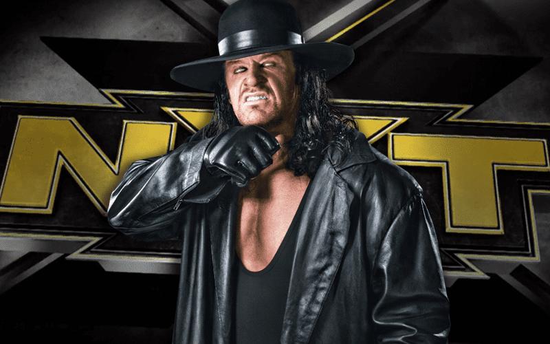 the-undertaker-wwe-nxt