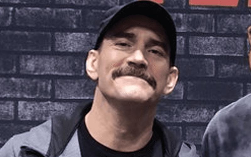 cm-punk-mustache-424