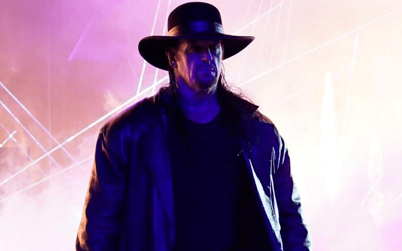 the-undertaker-4824