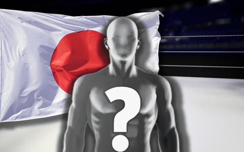 japanese-wrestling-ring-spoiler-japan