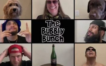 bubbly-bunch-42