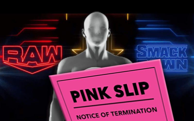 pink-slip-nxt-raw-wwe-superstar