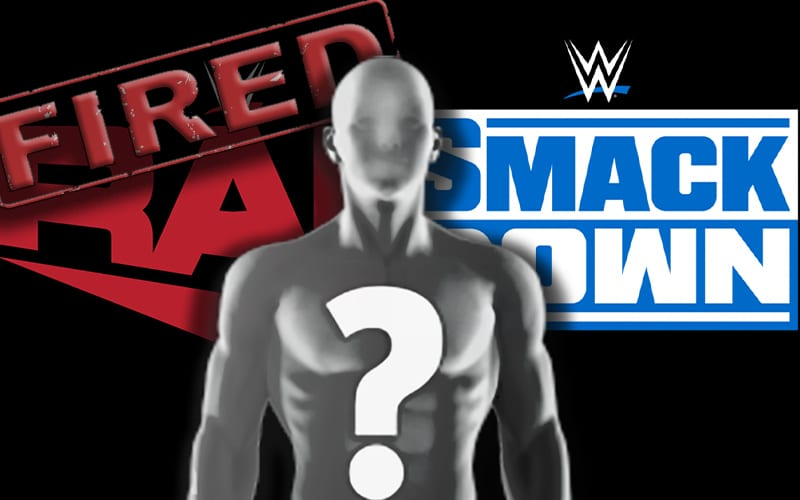 raw-smackdown-spoiler-fired