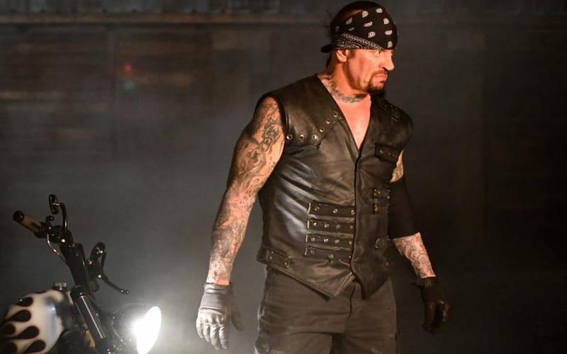 the-undertaker-boneyard-kajkja