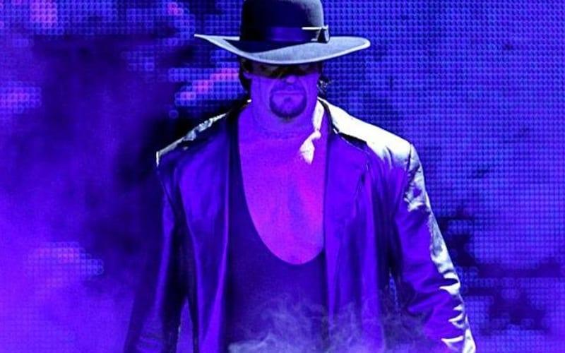 undertaker-84284