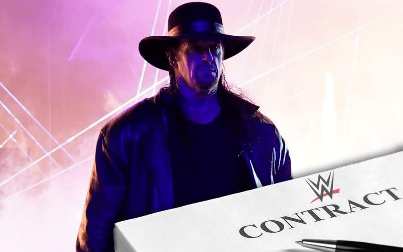 undertaker-wwe-contract-482