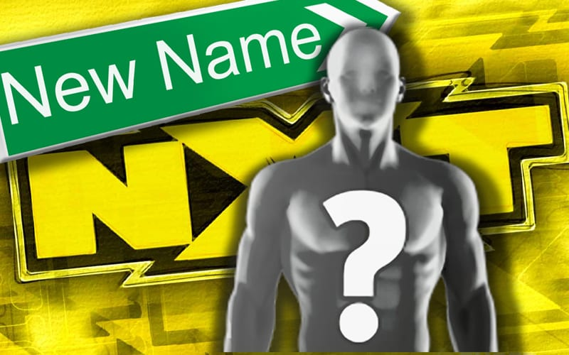 new-name-nxt-superstar-spoiler