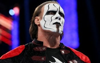 Sting Hints That He Wants One More Match