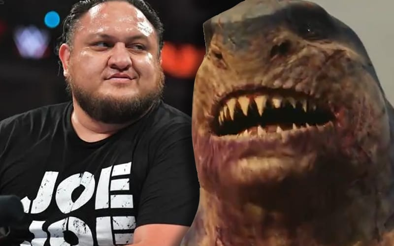 samoa-joe-king-shark