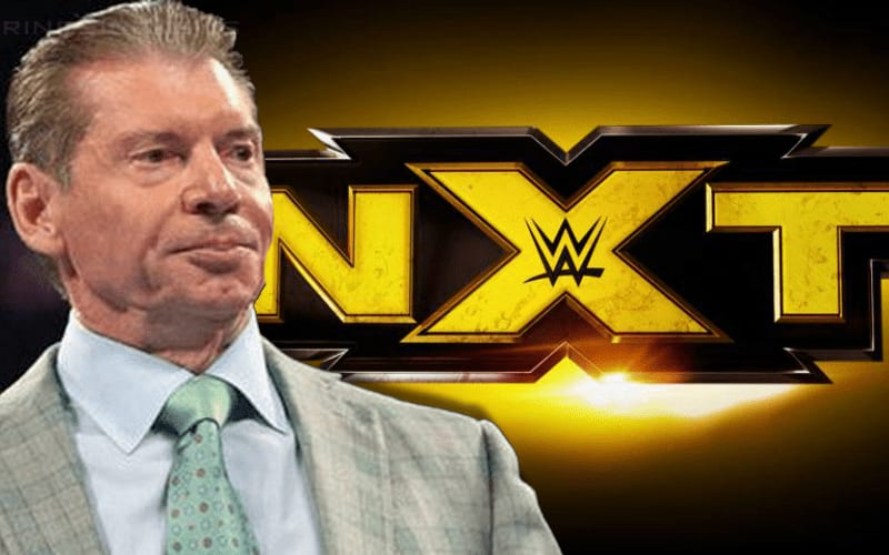 vince-mcmahon-nxt